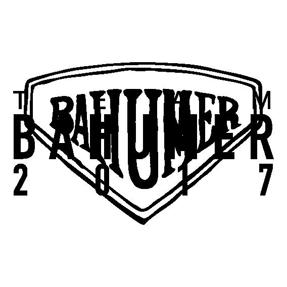 LOGO team bahumer 2017-06